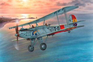 Vickers Vildebeest 245 Background for Android, iPhone and iPad