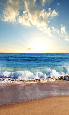 Screenshot №1 pro téma Beach and Waves 240x400