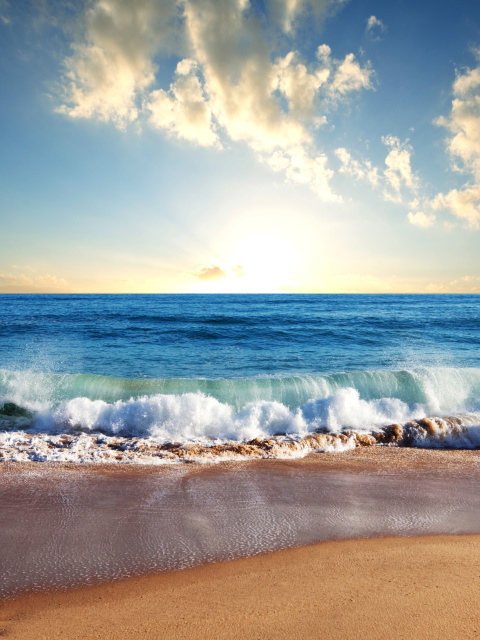 Screenshot №1 pro téma Beach and Waves 480x640