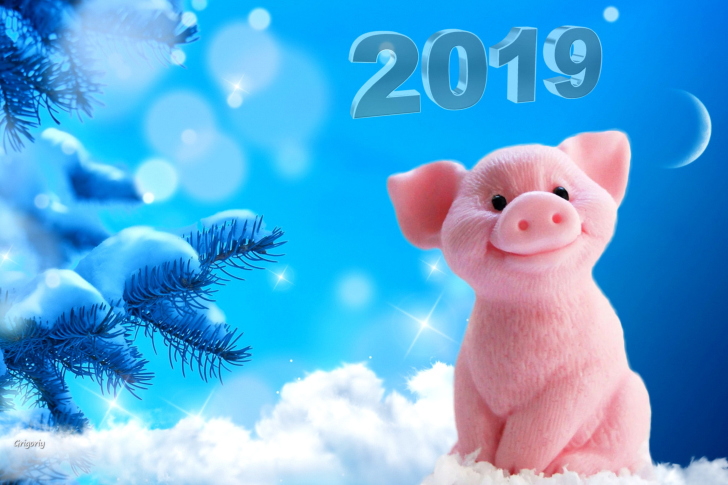 Sfondi 2019 Pig New Year Chinese Calendar