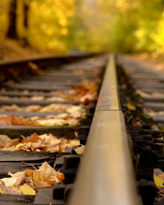 Railway tracks in autumn Picture for Nokia Lumia 920T