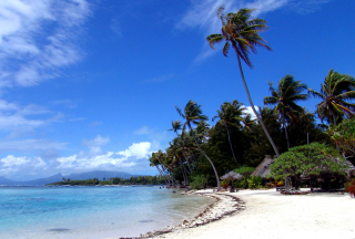 Cook Islands sfondi gratuiti per cellulari Android, iPhone, iPad e desktop