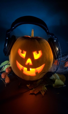 Pumpkin In Headphones wallpaper 240x400