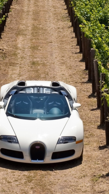 Screenshot №1 pro téma Bugatti Veyron In Vineyard 360x640
