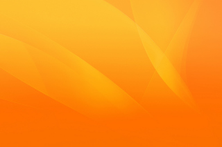 Warm orange petals Picture for Android, iPhone and iPad