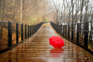 Free Red Umbrella In Rainy Day Picture for Android, iPhone and iPad