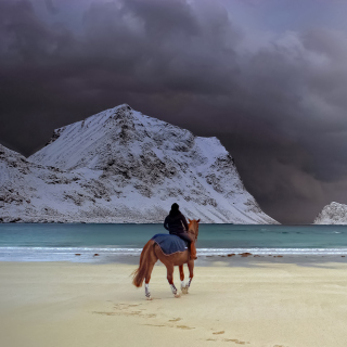 Horse on beach sfondi gratuiti per iPad 3