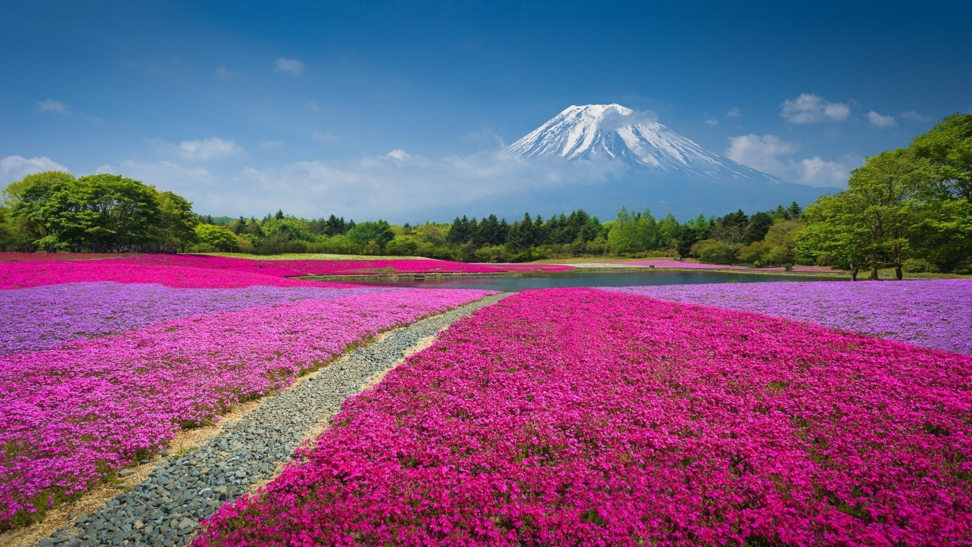 Japanese volcano in spring wallpaper for desktop 1920x1080 for Immagini gratis per desktop primavera