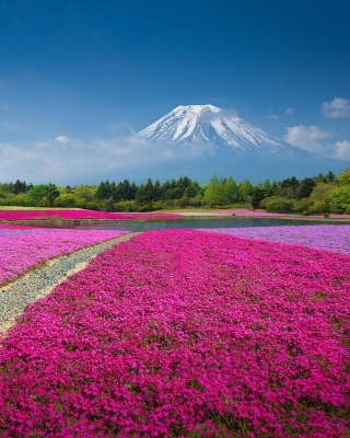 Japanese volcano in spring Background for HTC Titan