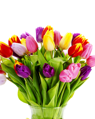 Free Tulips Bouquet Picture for Nokia C6