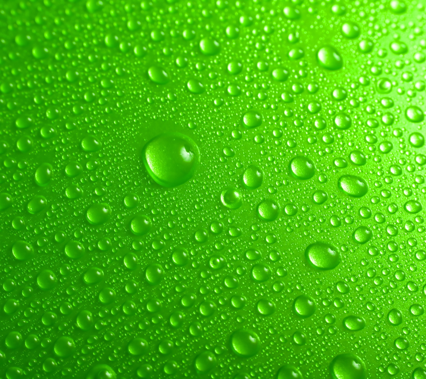 Sfondi Green Water Drops 1440x1280