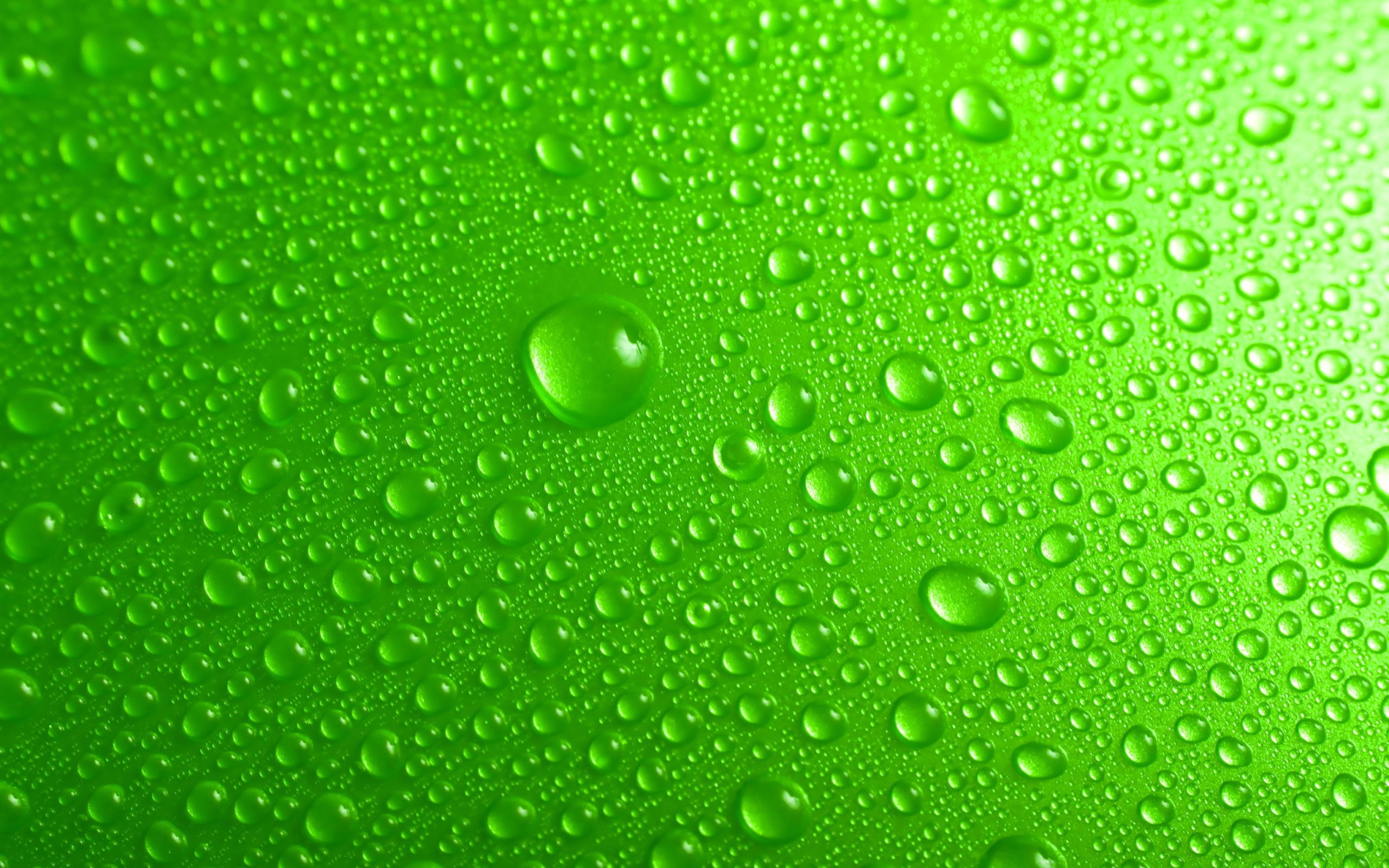 перфоратором картинка на телефон зеленого цвета тому же, пауки