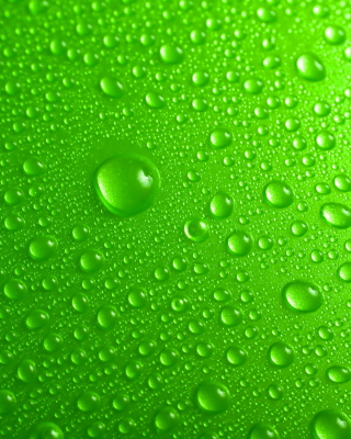 Картинка Green Water Drops для телефона и на рабочий стол 640x1136