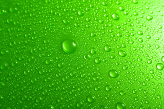 Green Water Drops Wallpaper for 1920x1080