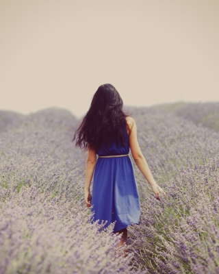 Free Lavender Dress Lavender Field Picture for 360x640