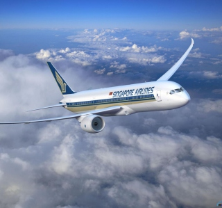 Free Singapore Airlines Picture for 208x208