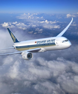 Free Singapore Airlines Picture for iPhone 5S