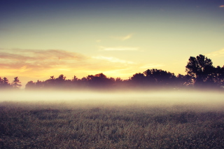 Morning Fog Wallpaper for Desktop 1920x1080 Full HD