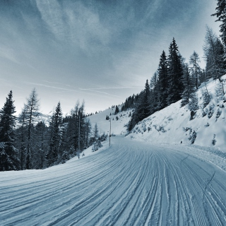 Winter Road Wallpaper for iPad mini 2