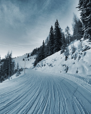 Winter Road Wallpaper for 132x176