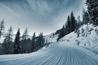 Winter Road Background for 1280x1024