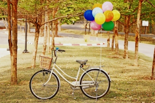 Party Bicycle Wallpaper for Android, iPhone and iPad