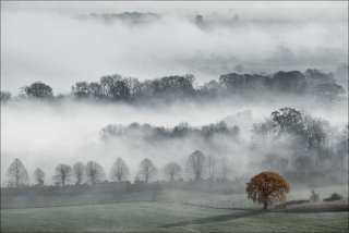 Fog In England Wallpaper for Android, iPhone and iPad