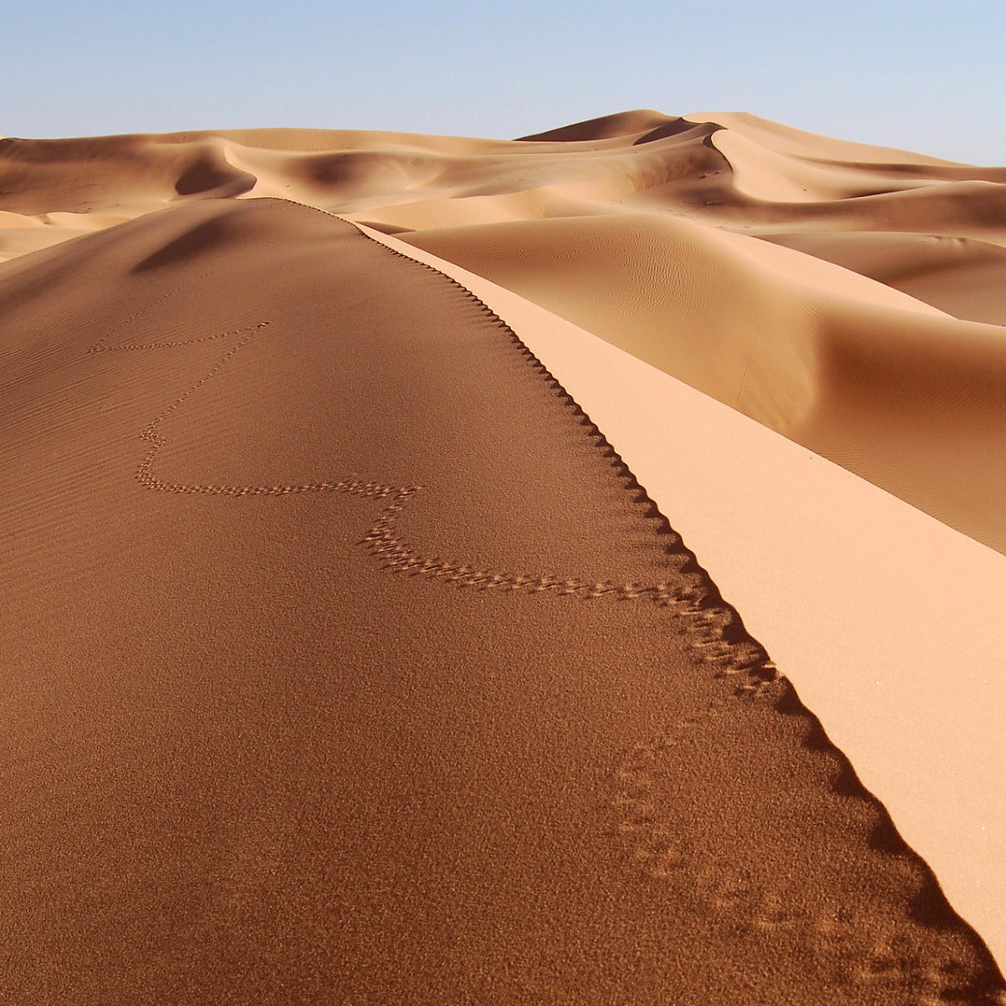природа песок море пустыня nature sand sea desert бесплатно