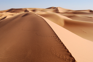 Desert Dunes In Angola And Namibia Picture for Android, iPhone and iPad