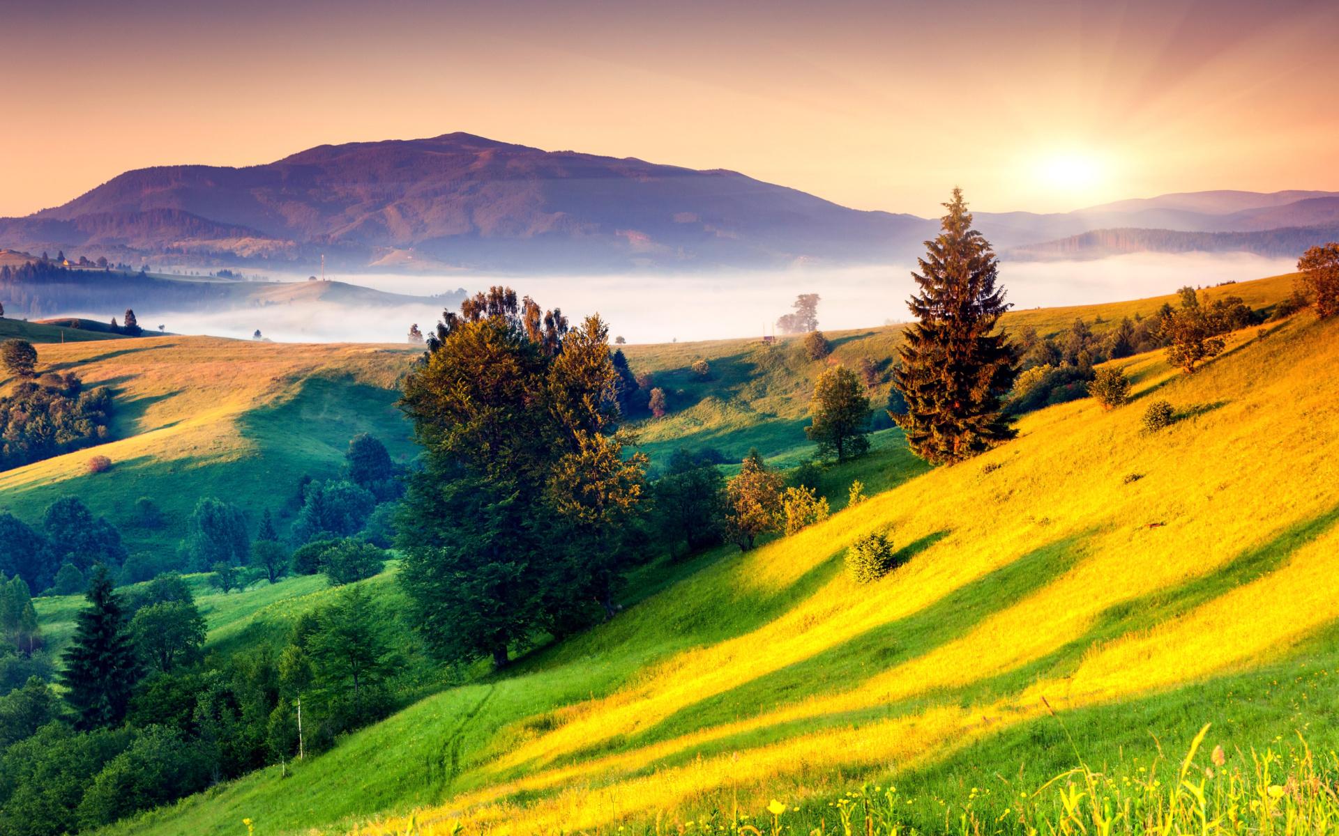 Landscape in fog fondos de pantalla gratis para for Imagenes full hd para fondo de pantalla