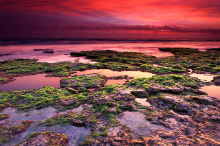 Kostenloses Sunrise on coast Wallpaper für 1280x960