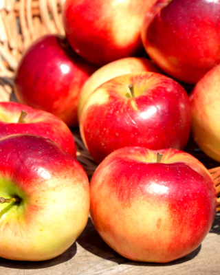 Free Autumn Apples Picture for Nokia Asha 306