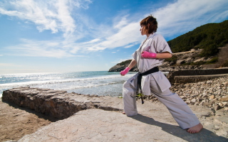 Karate By Sea Background for LG P500 Optimus One