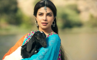 Free Priyanka Chopra In Teri Meri Kahaani Picture for Android, iPhone and iPad
