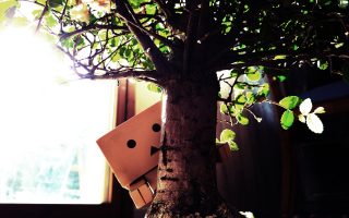 Little Danbo Hiding Behind Plant Background for Android, iPhone and iPad