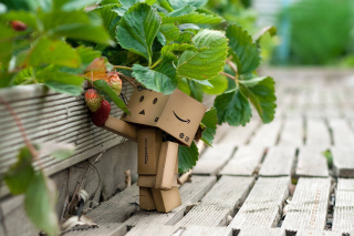 Amazons Mascot Danbo Background for Android, iPhone and iPad