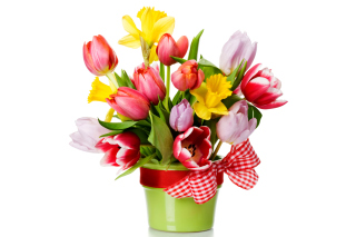 Free Fresh Spring Bouquet Picture for Android, iPhone and iPad