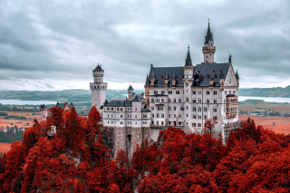 Neuschwanstein Castle in Fall sfondi gratuiti per Samsung Galaxy Pop SHV-E220