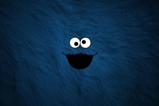 Kostenloses Cookie Monster Wallpaper für Android, iPhone und iPad
