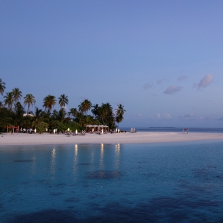Tropic Tree Hotel Maldives sfondi gratuiti per iPad 3
