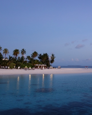 Free Tropic Tree Hotel Maldives Picture for HTC Titan