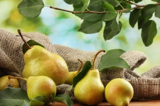 Fresh Pears With Leaves Background for Android, iPhone and iPad