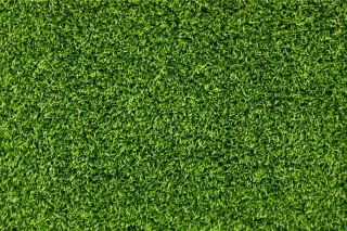 Short Green Grass Background for LG P700 Optimus L7