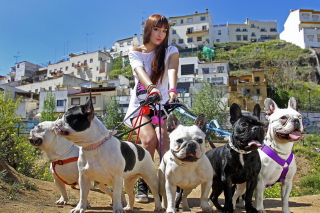 Girl Walking With Bulldogs - Obrázkek zdarma pro Widescreen Desktop PC 1680x1050