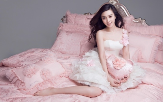 Li Bingbing Chinese Actress Picture for Android, iPhone and iPad