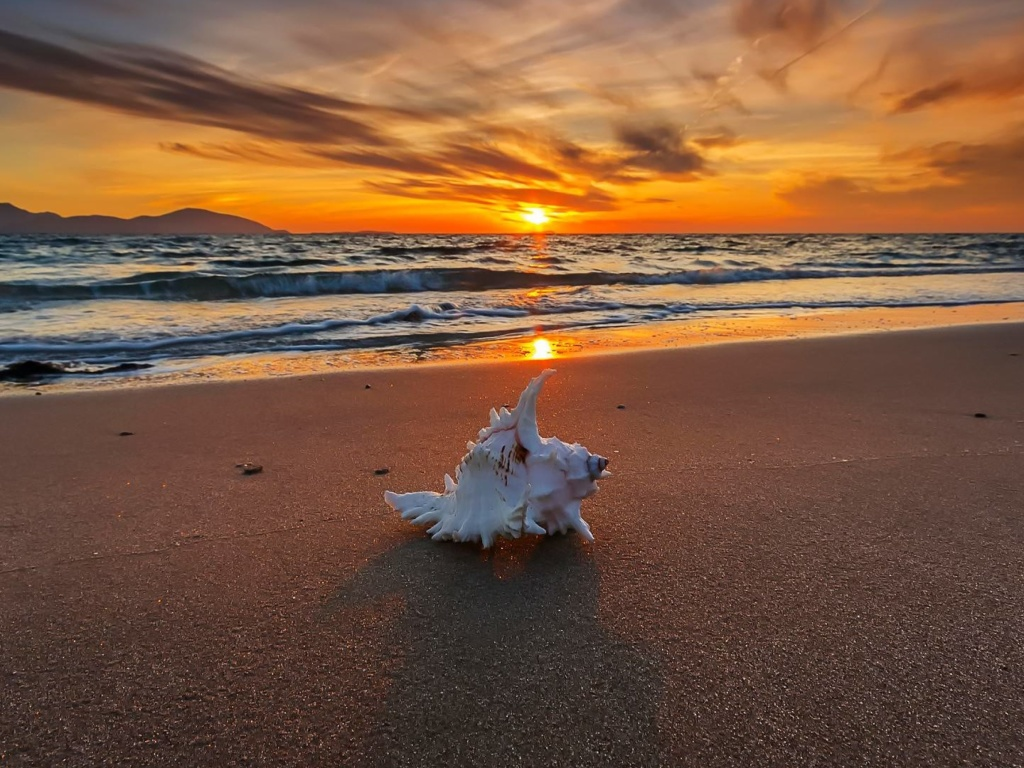 Sunset on Beach with Shell wallpaper 1024x768