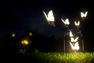 Light Butterflies Wallpaper for Android 720x1280